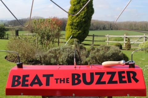 Giant Buzz Wire