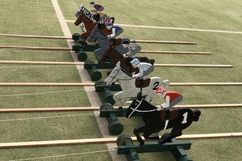 Twiddle Horse Racing